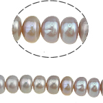 Button Beads ujërave të ëmbla kulturuar Pearl, Pearl kulturuar ujërave të ëmbla, 7-8mm, : 0.8mm, :15.5Inç, 49PC/Fije floku,  15.5Inç,