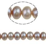 Button Beads ujërave të ëmbla kulturuar Pearl, Pearl kulturuar ujërave të ëmbla, Round, 6-7mm, : 0.8mm, :15Inç, 54PC/Fije floku,  15Inç,
