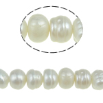 Barok Beads kulturuar Pearl ujërave të ëmbla, Pearl kulturuar ujërave të ëmbla, Round, 6-7mm, : 0.8mm, :15Inç, 54PC/Fije floku,  15Inç,