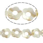 Beads Natyrore White Shell, Lule, asnjë, e bardhë, 29x30x3.50mm, : 2mm, :15.5Inç, 14PC/Fije floku,  15.5Inç,