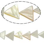 Beads Natyrore White Shell, Trekëndësh, asnjë, e bardhë, 15x14x3mm, : 2mm, :15.5Inç, 31PC/Fije floku,  15.5Inç,