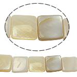Beads Natyrore Shell Verdha, Katror, asnjë, i verdhë, 11x3mm, : 2mm, :15.5Inç, 35PC/Fije floku,  15.5Inç,
