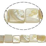 Beads Natyrore Shell Verdha, Katror, asnjë, i verdhë, 8x2.50mm, : 2mm, :15.5Inç, 46PC/Fije floku,  15.5Inç,
