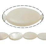 Beads Natyrore White Shell, Syri kali, asnjë, e bardhë, 14x24x4mm, : 2mm, :15.5Inç,  15.5Inç,