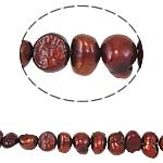 Barok Beads kulturuar Pearl ujërave të ëmbla, Pearl kulturuar ujërave të ëmbla, 4-5mm, : 0.8mm, :14Inç,  14Inç,