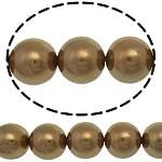 Detit të Jugut Beads Shell, Jug Deti Shell, Round, asnjë, ngjyrë kafe, 10mm, : 0.5mm, :16Inç, 40PC/Fije floku,  16Inç,
