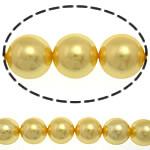 Detit të Jugut Beads Shell, Jug Deti Shell, Round, asnjë, i verdhë, 12mm, : 0.5mm, :16Inç, 34PC/Fije floku,  16Inç,