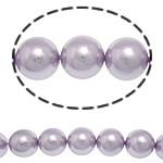 Detit të Jugut Beads Shell, Jug Deti Shell, Round, asnjë, rozë, 14mm, : 1mm, :15.5Inç, 28PC/Fije floku,  15.5Inç,
