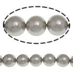 Detit të Jugut Beads Shell, Jug Deti Shell, Round, asnjë, gri, 14mm, : 1mm, :15.5Inç, 28PC/Fije floku,  15.5Inç,