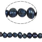 Barok Beads kulturuar Pearl ujërave të ëmbla, Pearl kulturuar ujërave të ëmbla, 5-6mm, : 0.8mm, :15Inç,  15Inç,