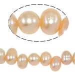 Barok Beads kulturuar Pearl ujërave të ëmbla, Pearl kulturuar ujërave të ëmbla, Një, 6-7mm, : 0.8mm, :14.5Inç,  14.5Inç,