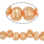 Barok Beads kulturuar Pearl ujërave të ëmbla, Pearl kulturuar ujërave të ëmbla, Një, 7-8mm, : 0.8mm, :14.5Inç,  14.5Inç,
