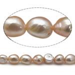 Barok Beads kulturuar Pearl ujërave të ëmbla, Pearl kulturuar ujërave të ëmbla, AA, 8-9mm, : 0.8mm, :15Inç,  15Inç,