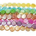 Beads Natyrore Colored Shell, Predhë, Monedhë, asnjë, ngjyra të përziera, 20x4mm, : 1.5mm, :15.5Inç, 10Fillesat/Qese,  Qese
