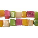 Beads Natyrore Colored Shell, Predhë, asnjë, ngjyra të përziera, 5-7mm, : 1.5mm, :28Inç, 10Fillesat/Qese,  Qese