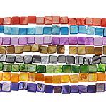 Natürliche farbige Muschelperlen, Muschel, Quadrat, gemischte Farben, 8-9mm, Bohrung:ca. 1.5mm, Länge:ca. 15.5 ZollInch, 10SträngeStrang/Tasche, verkauft von Tasche