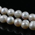 Round Beads kulturuar Pearl ujërave të ëmbla, Pearl kulturuar ujërave të ëmbla, Shape Tjera, natyror, e bardhë, Një, 9-10mm, : 0.8mm, :14Inç,  14Inç,