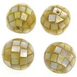 Natürliche gelbe Muschelperlen, oval, gelb, 15-16x15-16mm, Bohrung:ca. 1.5mm, 20PCs/Tasche, verkauft von Tasche