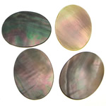 Cabochons Shell, Black Shell, Oval, 15x20x1-2mm, 200PC/Qese,  Qese