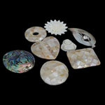 Pendants Shell, Predhë, i praruar, approx 23-47x23-35x2-5mm, : 1mm, 10PC/Qese,  Qese
