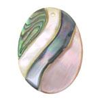 Pendants Shell, Predhë, Oval, approx 40x30x5mm, : 1mm, 10PC/Qese,  Qese