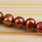 Barok Beads kulturuar Pearl ujërave të ëmbla, Pearl kulturuar ujërave të ëmbla, i lyer, 8-9mm, : 0.8mm, :15Inç,  15Inç,