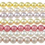 Detit të Jugut Beads Shell, Jug Deti Shell, Round, asnjë, ngjyra të përziera, 8mm, : 0.8mm, : 16Inç, 10Fillesat/Qese,  Qese