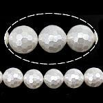 Detit të Jugut Beads Shell, Jug Deti Shell, Round, asnjë, e bardhë, 12mm, : 0.8mm, : 16Inç, 34PC/Fije floku,  16Inç,