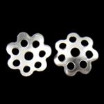 Iron Bead Caps, Hekur, Lule, Ngjyra argjend praruar, asnjë, asnjë, , nikel çojë \x26amp; kadmium falas, 8x1.50mm, : 1.5mm, 10000PC/Qese,  Qese