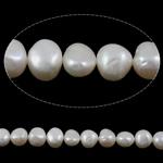 Barok Beads kulturuar Pearl ujërave të ëmbla, Pearl kulturuar ujërave të ëmbla, e bardhë, AA, 10-11mm, : 1mm, :15.5Inç,  15.5Inç,