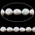 Barok Beads kulturuar Pearl ujërave të ëmbla, Pearl kulturuar ujërave të ëmbla, vjollcë, Një, 10-11mm, : 1mm, :15Inç,  15Inç,