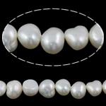 Barok Beads kulturuar Pearl ujërave të ëmbla, Pearl kulturuar ujërave të ëmbla, e bardhë, Një, 9-10mm, : 1mm, :15Inç,  15Inç,