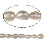 Barok Beads kulturuar Pearl ujërave të ëmbla, Pearl kulturuar ujërave të ëmbla, vjollcë, Një, 8-9mm, : 1mm, :15Inç,  15Inç,