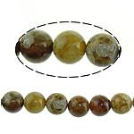 Beads Natyrore Fosile agat, Antique agat, Round, 8mm, : 1mm, : 15.5Inç, 10Fillesat/Shumë,  Shumë