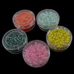 Seed Glass Beads përziera, i përzier, 31x9mm, 2x3mm, : 1mm, 16Boxes/Kuti,  Kuti