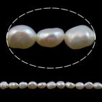 Barok Beads kulturuar Pearl ujërave të ëmbla, Pearl kulturuar ujërave të ëmbla, AA, 4-5mm, : 0.8mm, :15Inç,  15Inç,