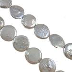 Monedhë Beads ujërave të ëmbla kulturuar Pearl, Pearl kulturuar ujërave të ëmbla, AA, 14mm, : 0.8mm, :15Inç,  15Inç,
