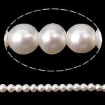 Round Beads kulturuar Pearl ujërave të ëmbla, Pearl kulturuar ujërave të ëmbla, i errët, asnjë, AA, 2-2.5mm, : 0.5mm, :15.7Inç,  15.7Inç,