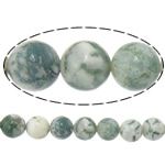 Baum Achat Perlen, Baumachat, rund, 8mm, Bohrung:ca. 1.2mm, Länge:ca. 15.5 ZollInch, 10SträngeStrang/Menge, ca. 46PCs/Strang, verkauft von Menge