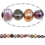Barok Beads kulturuar Pearl ujërave të ëmbla, Pearl kulturuar ujërave të ëmbla, i lyer, ngjyra të përziera, 7-8mm, : 1mm, :15.4Inç,  15.4Inç,