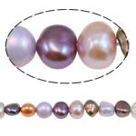 Barok Beads kulturuar Pearl ujërave të ëmbla, Pearl kulturuar ujërave të ëmbla, i lyer, ngjyra të përziera, 5.5-6mm, : 1mm, :15.4Inç,  15.4Inç,