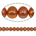 Barok Beads kulturuar Pearl ujërave të ëmbla, Pearl kulturuar ujërave të ëmbla, i lyer, i verdhë, 8-9mm, : 1mm, :15.7Inç,  15.7Inç,