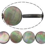 Beads Zi Shell, Monedhë, natyror, asnjë, asnjë, 12x12x3mm, : 0.7mm, :15.5Inç, 5Fillesat/Shumë,  Shumë
