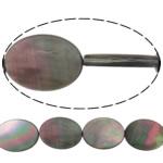 Beads Zi Shell, Oval Flat, natyror, asnjë, asnjë, 8x12x3mm, : 0.7mm, :16Inç, 5Fillesat/Shumë,  Shumë