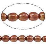 Rajs Beads ujërave të ëmbla kulturuar Pearl, Pearl kulturuar ujërave të ëmbla, Oriz, i lyer, kuqalashe-kafe, Një, 8-9mm, : 0.8mm, :15Inç,  15Inç,