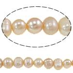 Barok Beads kulturuar Pearl ujërave të ëmbla, Pearl kulturuar ujërave të ëmbla, Round, asnjë, rozë, 5-6mm, : 0.8mm, :15.3Inç,  15.3Inç,
