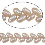 Rajs Beads ujërave të ëmbla kulturuar Pearl, Pearl kulturuar ujërave të ëmbla, Oriz, asnjë, vjollcë, Një, 5-6mm, : 0.8mm, :15.7Inç,  15.7Inç,