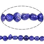 Barok Beads kulturuar Pearl ujërave të ëmbla, Pearl kulturuar ujërave të ëmbla, Nuggets, i lyer, vjollcë, 7-8mm, : 0.8mm, :14.7Inç,  14.7Inç,
