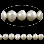 Barok Beads kulturuar Pearl ujërave të ëmbla, Pearl kulturuar ujërave të ëmbla, Oval, asnjë, e bardhë, 8-9mm, : 0.8mm, : 15Inç,  15Inç,
