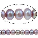 Button Beads ujërave të ëmbla kulturuar Pearl, Pearl kulturuar ujërave të ëmbla, Oval, asnjë, vjollcë, 9-10mm, : 0.8mm, : 15Inç,  15Inç,
